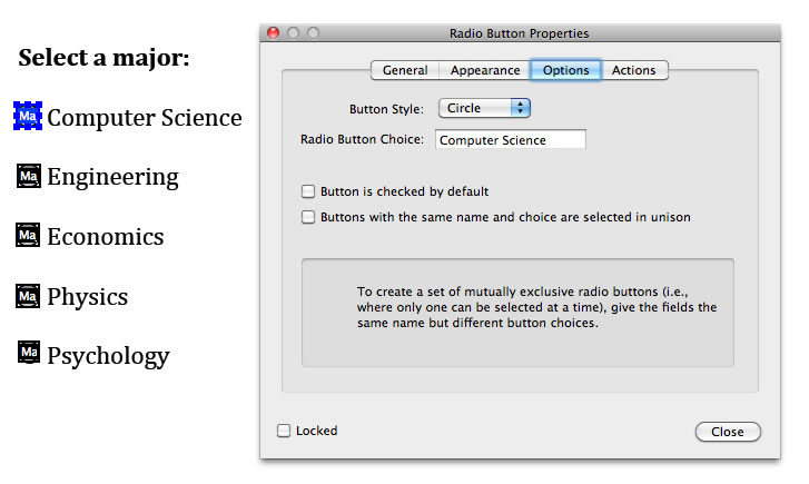 Screen shot of the same set of radio buttons as in the previous image, with 'Computer Science' entered into the Radio Button Choice field